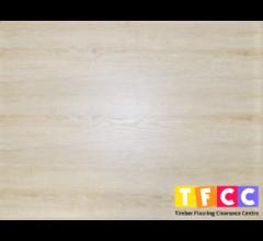 Logan 8mm Laminate Flooring (White Wash)